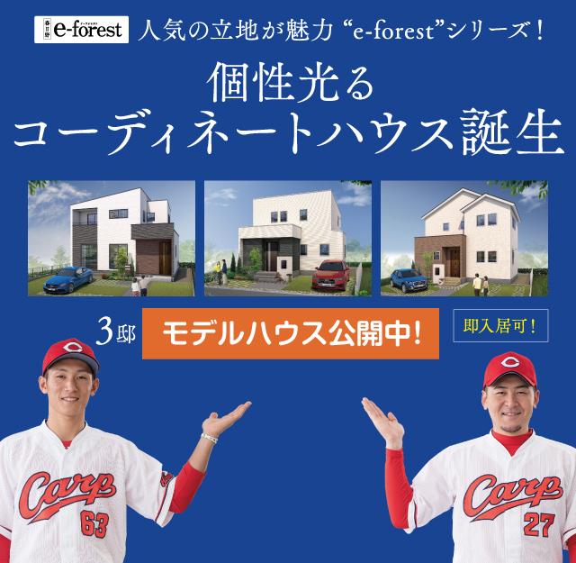 月々6万円台で購入可能!今ならさらにお得!住まい給付金最大30万円支給。